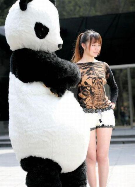 Girls With Panda Shorts